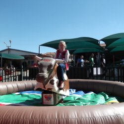 T-Rex Mechanical Bull